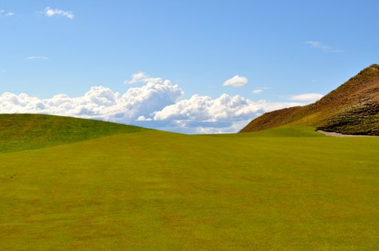 Chambers_Bay_Fescue