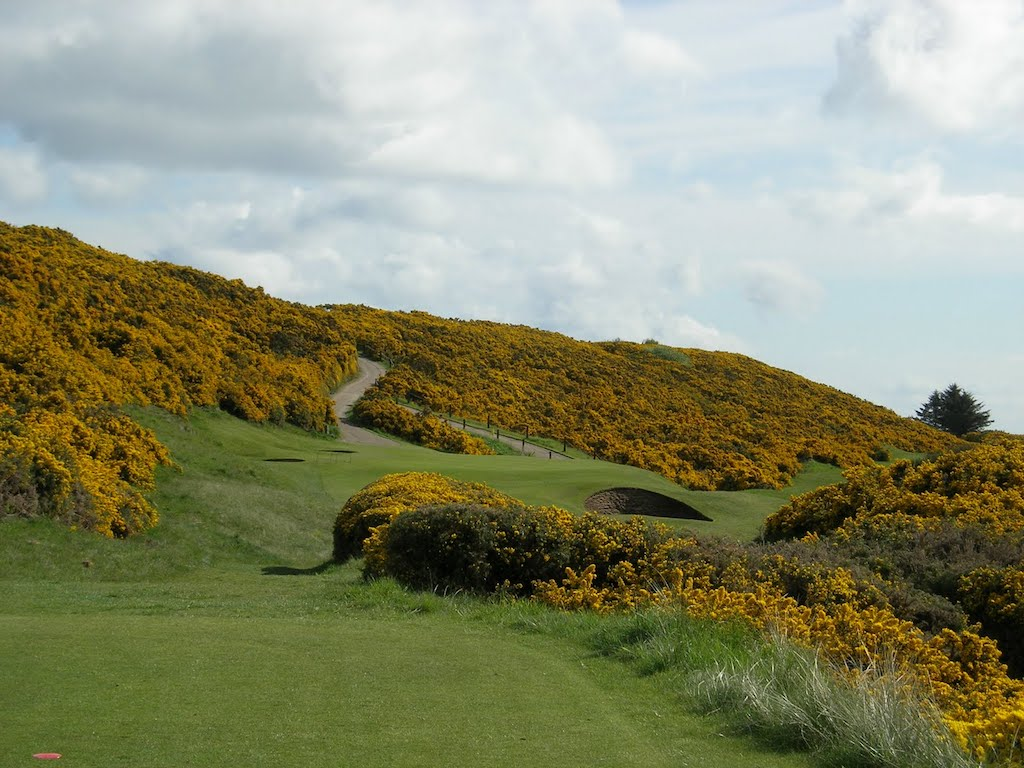 royal-dornoch-par-3-6th